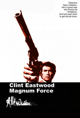 Magnum Force (1973) Main Poster