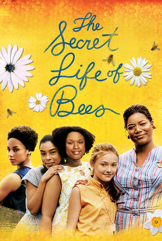 The Secret Life Of Bees (2008) Main Poster