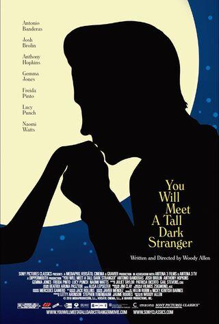 You Will Meet A Tall Dark Stranger (2010) Main Poster