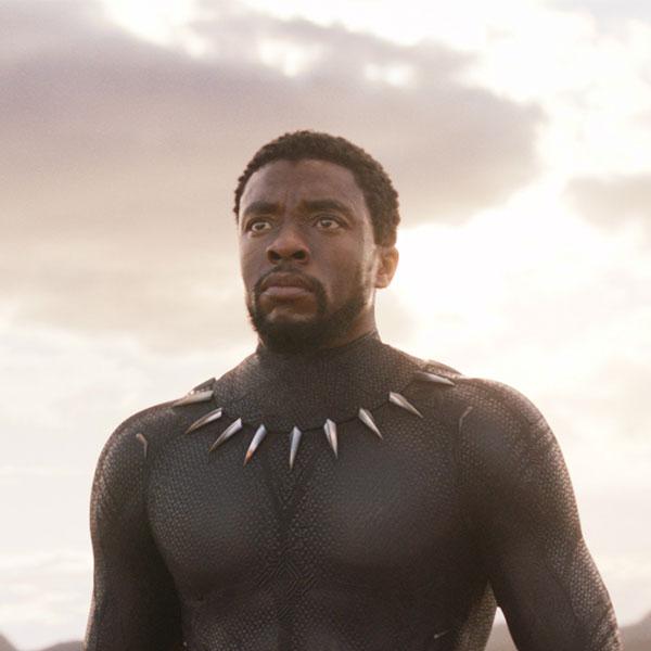 T'Challa<br>Black Panther by Chadwick Boseman